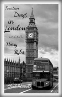 Fourteen Days in London with Harry Styles cover