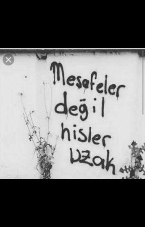 MESAFELER by 1deli_siirtli