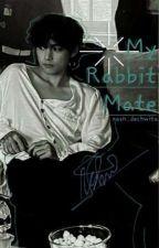 My Rabbit Mate°taekook° by AgustDisdisgusted