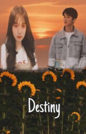 Destiny  by N-Hwa48