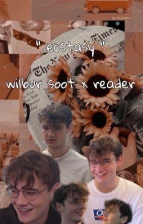 ecstasy - wilbur soot x reader band au by skullsocket