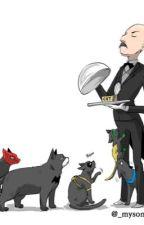 The Bat... Cats?! (Batboys x Reader) by AnimeGirl3104