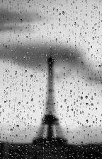 Downpour (Marin X Adrien Fanfiction) by stupid_dumbgenius