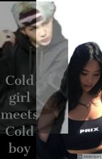 Cold Girl Meets Cold boy by Sky_lerrrrrrrrr