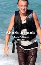 Shark Attack (Tom Felton x Reader) by bloody22chicken
