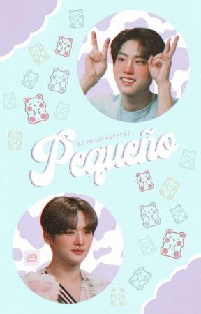 Pequeño ➸ Minsung  by minsungpapas