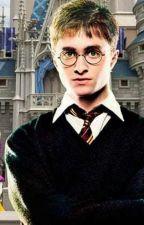 Harry Potter: Walt Disney World special by KasiePotter