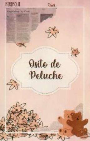 Osito De Peluche  by KiRiKoUi