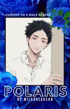 polaris. [haikyuu various x male! reader] by milkbreadsan