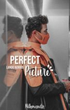Perfect Picture - LN by milkmando