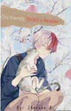 Old Friends-A Shoto Todoroki x Reader by Sharona-Chan
