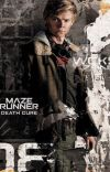 The Death Cure (Newt X Reader) cover
