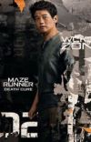 The Death Cure (Minho X Reader) cover