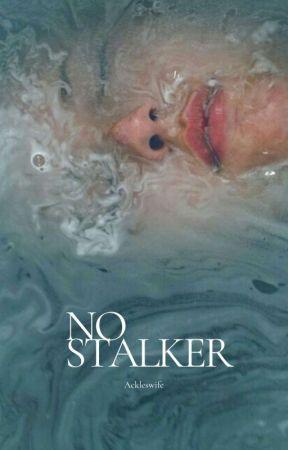 no, stalker•malik by ackleswife
