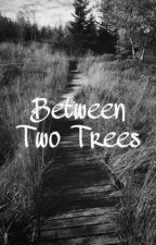 Between Two Trees (Mush Meyers x Reader) by NSTOBI1992