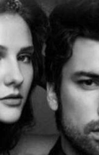 عشق الزين cover