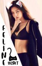 FELINE SECRET //Jenlisa FanFic by EyezDontLie