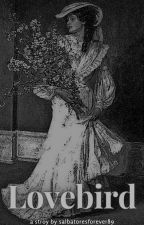 ¹ LOVEBIRD. . .. Damon Salvatore by salvatoresforever89