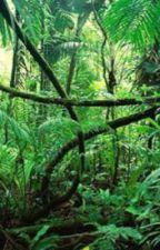 Operation: Jungle Ash by Yaboi1234510