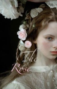 Unfolding the Rose cover