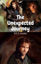 The Unexpected Journey (Kili x reader) - Completed by EmiH758