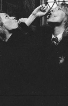 Weasley Twins One Shots [x Reader] by lanieiswriting