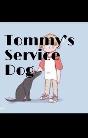 Tommyinnit's Service Dog by Lilly2169