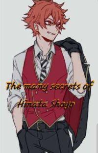 The many secrets of Hinata Shoyo cover