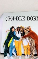(G)I-DLE Dorm by Sooshu_Verse