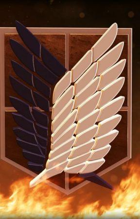 Attack on Titan Mikasa x Male Reader:Survey Core Missions by Barrededaniel639
