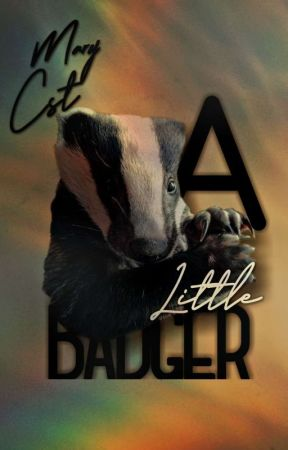 A Little Badger - Blog by ary-cst