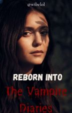 REBORN INTO THE VAMPIRE DIARIES by wizzifer