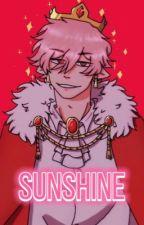 Sunshine - Technoblade x Reader  by eizisbored