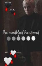 the mudblood he craved ~ a draco malfoy fan fic by mollymalfoyyy