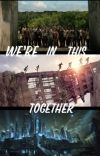 we're in this together.                Maze Runner x Reader cover