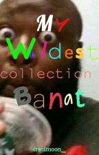 My Wildest Collection Banat by crsntmoon_