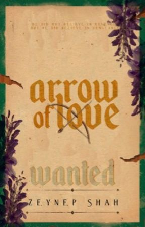 Arrow of Love  by zeynepshah
