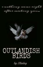 Диковинные птицы/Outlandish birds от mu_lermontovv