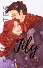 Jily: Soulmates by Itslilypotter07