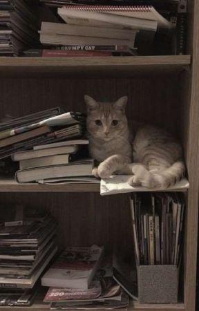 quattro amori più uno • shin soukoku by A-AKIKO