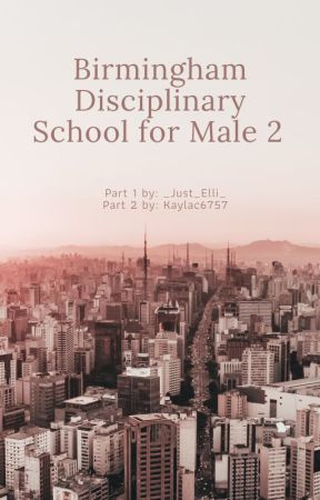 Birmingham Disciplinary School for Male - L.S. 2 by kaylac6757