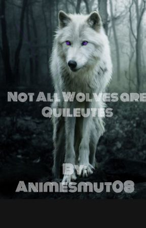 Not All Wolves are Quileutes by Animesmut08