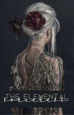 The Elemental Sorceress by nerdynstoned