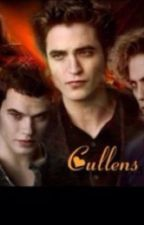 The Cullen boys human mate by ncis_4ever