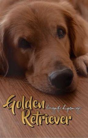 Golden Retriever   m.yg   by bagofchipsmgc