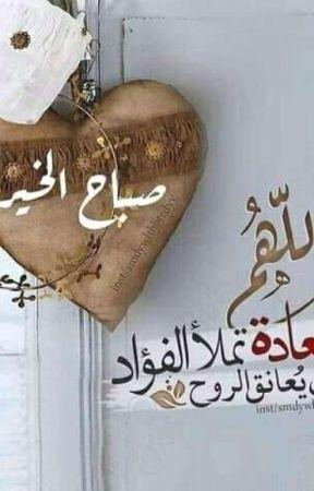 الشيخة لهب وخذوهه فصليه by Dnturaaa25