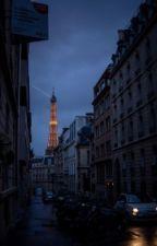 The Mafia in Paris by xcarmelaxoxx