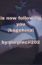 is now following you (kagehina) by Purplecil202