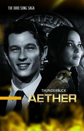𝐀𝐄𝐓𝐇𝐄𝐑⁶  katniss everdeen by thunderbuck