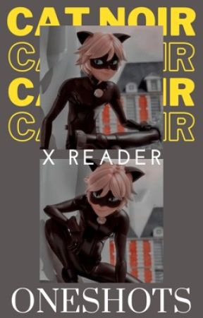 Chat Noir X Reader Oneshots [HOLD] by Seasonshine
